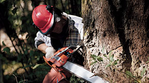 gs-chainsaw-img-small